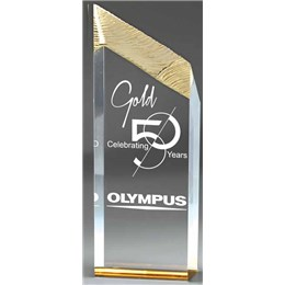 Custom Gold Recognition award with laser engraving and 50 years of service recognition